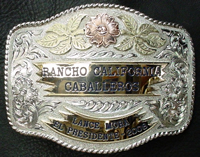 Gold and Silver Buckle